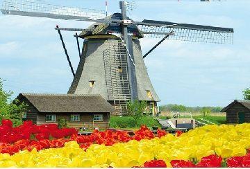 Crociera: Primavera in Olanda